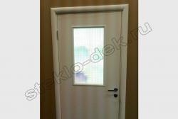 Armirovannoe steklo v dverjah na lestnichnyh ploshhadkah (1)