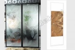 Dveri shkafa kupe s dekorativnym zerkalom ZEBRANO (SMC-DSG-031) (1)